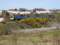 A Manchester Airport - Glasgow Central Transpennine Express class 185 DMU, diverted on to the R&C due to Sunday engineering works, runs smartly down the 1 in 110 gradient at Baillieston.<br><br>[Colin McDonald&nbsp;02/04/2017]