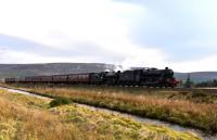 Not far to go now. Black 5 No.45212 and K1 No.62005 are a few minutes early as they haul <i>The Great Britain X</i> across the moor at Moy near Inverness.<br><br>[John Gray&nbsp;01/05/2017]