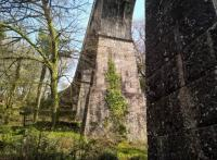 The wonderful Treffry tramway viaduct and aqueduct near Luxulyan station in April 2017.<br><br>[Ken Strachan&nbsp;11/04/2017]