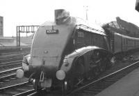 Leaving the east end of Newcastle Central in 1960 is Gresley A4 Pacific no 600014 <I>Silver Link</I>. <br><br>[K A Gray&nbsp;//1960]