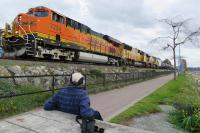 At the border town of White Rock, British Columbia the passage of a mixed freight from the USA provides a distraction for a birdwatcher strolling along the Pacific shoreline on 3 October 2016.  The rear of the train will have just cleared the border, some two miles distant.<br><br>[Malcolm Chattwood&nbsp;03/10/2016]
