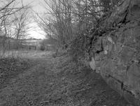 The Halbeath Waggonway served pits to the east of Dunfermline and also local industries and ran to Inverkeithing Bay, finally closing in 1867.<br> This view looks north along the course of the waggonway towards the fence marking the boundary with the M90 motorway in 1988, over 120 years after closure. <br> <br> The location is close to Middleden on this <a href=http://maps.nls.uk/view/82882233 target=external>NLS map</a>.<br><br>[Bill Roberton&nbsp;//1988]