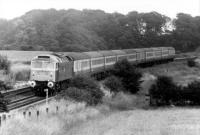 A sparkling 47429 seen nearing Kirkham with a train from Euston on 24th July 1982. Despite appearances the former D1541 was withdrawn less than five years later and cut up by a contractor at Crewe in 1989. <br><br>[Mark Bartlett&nbsp;24/07/1982]