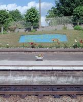 With commendable enthusiasm flowers were planted at Dumfries with the BR logo, word 'Sprinter' and logo to coincide with their introduction in 1989. The view is of the southbound platform.<br><br>[Ewan Crawford&nbsp;//1989]
