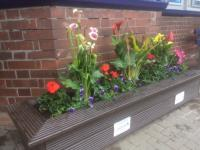 Another one of the planters at Whitecraigs station in June 2017.<br><br>[Peter Mckinlay&nbsp;08/06/2017]