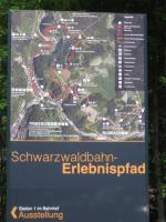 A substantial information board outside Triberg station illustrates<br> the dramatic sweep of the Schwarzwaldbahn (the black and white line) and the<br> accompanying Erlebnispfad (discovery path) in red. This considerable feat of<br> engineering, which proved to be a model for rail construction in other<br> mountainous parts of the world, involved a distance of 11 km as the crow<br> flies from Hornberg to St Georgen being extended to 26 km of track length -<br> but with the outcome that no gradient is steeper than 1 in 50. <br> <br><br>[David Spaven&nbsp;03/06/2017]