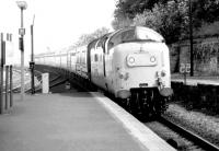 Deltic no 55010 <I>'The Kings Own Scottish Borderer'</I> arriving at Berwick on a bright and sunny 10 August 1981 with a Dundee - Kings Cross train.<br><br>[John Furnevel&nbsp;10/08/1981]