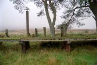 The westbound platform at Loch Skerrow. Behind it the remote moorland can be seen.<br><br>[Ewan Crawford&nbsp;//]