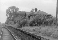 Campsie Glen Station on the Kirkintilloch to Aberfoyle Line.<br><br>[John Robin 08/07/1963]