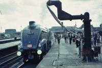 60019 at Stirling with last public run to Aberdeen.<br><br>[John Robin&nbsp;03/09/1966]