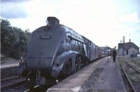 60024 <I>Kingfisher</I> waits for the photographer at Bridge of Dun in August 1965.<br><br>[John Robin&nbsp;19/08/1965]
