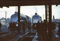 60019 <I>Bittern</I> stands alongside 60024 <I>Kingfisher</I> at Ferryhill Shed in September 1966.<br><br>[John Robin&nbsp;03/09/1966]