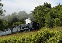 Rebuilt Bullied Battle of Britain 4-6-2 34052 <I>Lord Dowding</I>, one of several Southern Pacifics in steam that day, works between Ropley and Medstead & Four Marks during the Mid Hants End of Southern Steam 50th gala on 2nd July 2017. <br> <br> <br><br>[Peter Todd&nbsp;02/07/2017]