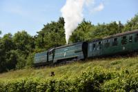 34081 <I>92 Squadron</I>, an Un-Rebuilt Battle of Britain 4-6-2 and one of five Bullied Pacifics working at the End of Southern Steam 50th Gala at the Mid-Hants Railway in July 2017.<br> <br><br>[Peter Todd&nbsp;02/07/2017]