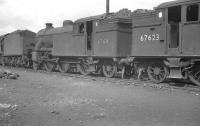 Photograph taken in the shed yard at 65C Parkhead on 3 April 1961. Locomotives present include Gresley V3 2-6-2T 67611, stabled alongside classmate 67623.  <br><br>[K A Gray&nbsp;03/04/1961]
