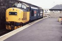 37191, newly named <b>International Youth Year 1985</b>, waits at Mallaig after arrival from Glasgow Queen Street/Fort William. Complete with Eastfield Scottie. 18.55 hrs., 26.05.85.<br><br>[Michael Green&nbsp;26/05/1985]