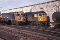 27033 shares company with 26015 at Perth following attempted self destruction.  The Class 27 was repaired and operated for almost another 7 years.  3rd March 1979.<br><br>[Graeme Blair&nbsp;03/03/1979]