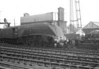 Scene on the goods lines at Newcastle Cemtral in 1961, with A4 60027 <I>Merlin</I> having been relegated to freight duties on this occasion. The Pacific is alongside the large NER water tower of 1891, located between the running lines and Forth Street on the south side of the station. <br><br>[K A Gray&nbsp;//1961]