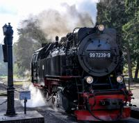 HSB locomotive 997239-9 (one of a batch built in the mid-1950s for the Harz 1000 mm system) just finished taking on water after hauling the 14:08 train from Eisfeder Talmühle on the 19th of September 2017.<br><br>[Norman Glen&nbsp;19/09/2017]