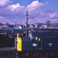 Sunday layover at Aberdeen Ferryhill depot on 5th March 1972. BR Blue D265 is in the foreground but 359 in green has lost the prefix. Classes 08 and 47 can also be seen.  <br> <br><br>[Graeme Blair&nbsp;05/03/1972]