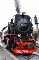 Harzer Schmalspur-bahnen 99 236 about to take the 10:25 train from Wernigerode to Brocken on 17 September 2017 - hard to tell that it is 1000 mm gauge rather than 1435 mm (4 ft 8.5 in) gauge)!<br><br>[Norman Glen&nbsp;17/9/2017]