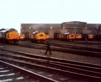 Eastfield Depot Open Day on 17th May 1986. A driech morning but an impressive line up of West Highland Scottie logo Class 37's, 27's and a Class 26 in Railfreight colours.<br><br>[Gordon Steel&nbsp;17/05/1986]
