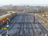 Before the cull - Sunday engineers possession at Barnetby looking towards Wrawby Junction. 8th February 2015.<br> <br> <br><br>[Graeme Blair 08/02/2015]