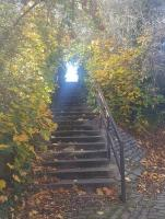 The climb - steps up to the former Haddington station.<br><br>[John Yellowlees&nbsp;22/10/2017]