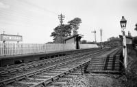 View looking south east at Pitmedden station towards Dyce in 1960, showing the timber platforms and level crossing. [Ref query 5 December 2017]<br><br>[David Murray-Smith&nbsp;18/05/1960]