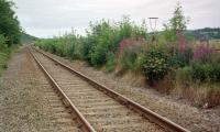 The view west from Pitmedden level crossing. A single lamp standard remained on the former eastbound platform in 1999. The platforms were in timber, so no longer exist.<br><br>[Ewan Crawford&nbsp;//1999]