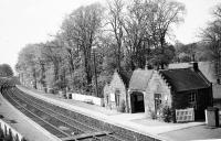 The view west over Kinaldie station in 1960. The platforms remain, but the line has been singled, station closed and the fine building has gone.<br><br>[David Murray-Smith&nbsp;15/05/1960]