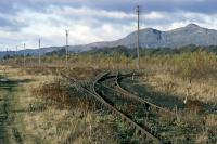 "This is a westward view from the east end of the Alloa ""new"" marshalling yard in November 1985. Most of the yard had fallen into disuse except for a run around loop needed for the Menstrie molasses tanks. The points shown were the eastern limit of travel for the running round locomotive (Class 27 at the time) and only the second from right switch was actually used. Behind the camera, a piece of timber had been wired in place across the track (the former up arrival line to the yard) to prevent the engine straying on to line that had been the responsibility of the previously abandoned Alloa West box.<br><br>[Mark Dufton&nbsp;/11/1985]"