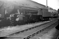 Another view of WD Austerity 2-8-0 no 90074, stabled alongside the south wall of Hawick shed on Sunday 24 August 1958 [see image 62589].<br><br>[Robin Barbour Collection (Courtesy Bruce McCartney)&nbsp;24/08/1958]