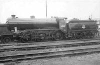 K2 2-6-0 no 61742 in new BR livery at Eastfield on 3 September 1949.<br><br>[G H Robin collection by courtesy of the Mitchell Library, Glasgow&nbsp;03/09/1949]