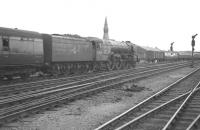 The combined coaches of the 2.30pm ex-Hull and the 2.52pm ex-Leeds Central are taken south from Doncaster bound for Kings Cross on Saturday 29 July 1961. Locomotive in charge is Doncaster based A1 Pacific 60128 Bongrace.    <br><br>[K A Gray&nbsp;//]