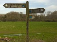 The North Dorset Trailway, on the old Somerset and Dorset trackbed, offers the unusual feature of spare trouser clips for cyclists on its direction signs. This one has strayed onto the wrong arm; perhaps that's why it was still there a month later.<br><br>[Ken Strachan 06/04/2018]