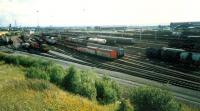 Mossend Marshalling Yard viewed from the north end bing (bing now removed).<br><br>[Ewan Crawford&nbsp;//1987]