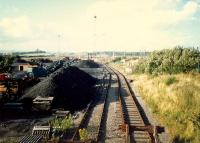 Coal yard at Mossend. View looks north.<br><br>[Ewan Crawford&nbsp;//1987]