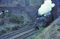 80051 comes out of the tunnel at Fairlie pier Junction on 11 April 1966.<br><br>[John Robin&nbsp;11/04/1966]