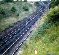 A road-cone relaxes on the embankment on the curved section of the Wishaw Deviation line just south of Holytown Junction.<br><br>[Ewan Crawford&nbsp;//1987]