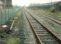 Looking west to Cambus Junction from the end of the platform of the closed station. Felled semaphore signalpost in foreground.<br><br>[Ewan Crawford&nbsp;//1988]