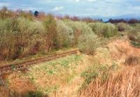 Alloa Marshalling Yard looking east. By the time the line closed the yard (foreground) had replaced the mainline (beyond trees) as the route in use.<br><br>[Ewan Crawford&nbsp;//1988]