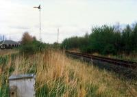 Looking east to Alloa at the former mainline by Alloa Marshalling Yard. The through route fell out of use before the yard. Access by kind permission of British Rail.<br><br>[Ewan Crawford&nbsp;//1988]
