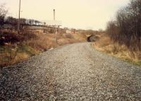 Looking north east at Knightswood South Junction. The lifted Stobcross Railway is in the foreground. After closure this cutting was filled with dumped rubbish. The line has been re-opened. Access by kind permission of British Rail.<br><br>[Ewan Crawford&nbsp;//1988]
