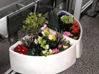 One of the attractive planters at Westerton station on 24 January 2013. See adjacent news item.<br><br>[ScotRail&nbsp;24/01/2013]